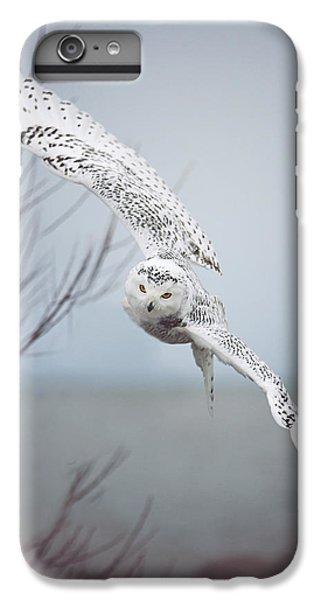 Snowy Owl In Flight IPhone 6 Plus Case by Carrie Ann Grippo-Pike