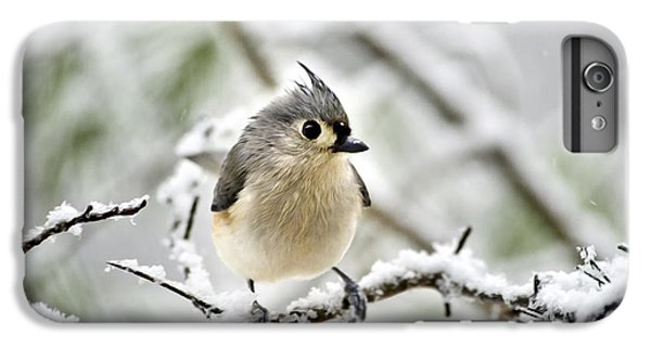 Snowy Tufted Titmouse IPhone 6 Plus Case by Christina Rollo