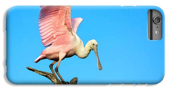 Spoonbill Flight IPhone 6 Plus Case by Mark Andrew Thomas