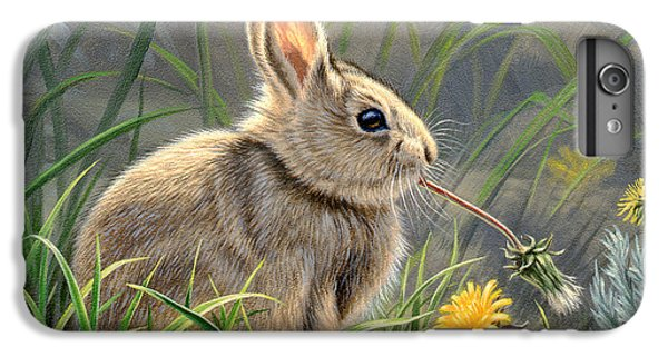 Rabbit iPhone 6 Plus Case - Spring Cottontail by Paul Krapf
