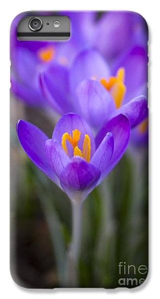 Spring Has Sprung IPhone 6 Plus Case