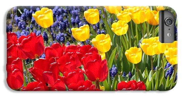 Spring Sunshine IPhone 6 Plus Case