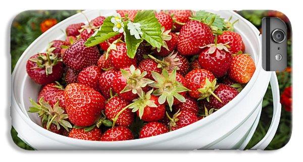 Strawberry Harvest IPhone 6 Plus Case by Elena Elisseeva