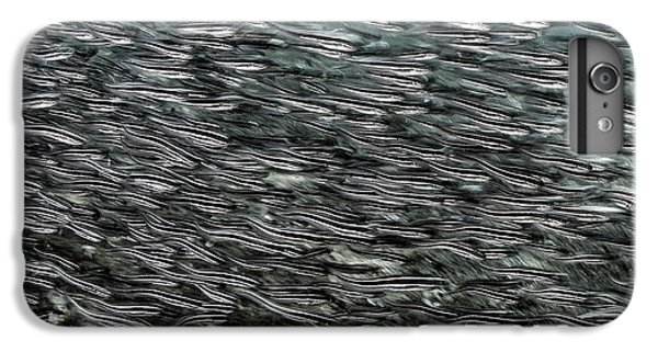 Catfish iPhone 6 Plus Case - Striped Catfish by Ethan Daniels