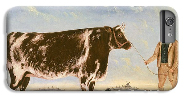 Study Of A Shorthorn IPhone 6 Plus Case by William Joseph Shayer
