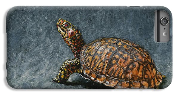 Tortoise iPhone 6 Plus Case - Study Of An Eastern Box Turtle by Dreyer Wildlife Print Collections