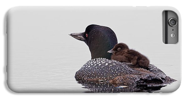 Loon iPhone 6 Plus Case - Sunday Ride by Jeff Sinon