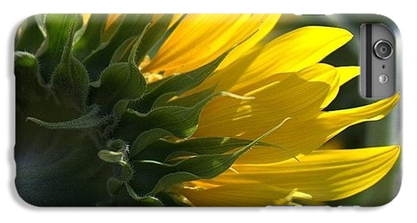 Colorful iPhone 6 Plus Case - #sunflower #closeup by Georgia Fowler