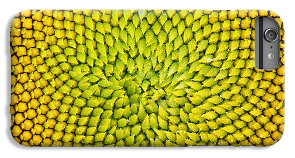 Sunflower iPhone 6 Plus Case - Sunflower Middle  by Tim Gainey