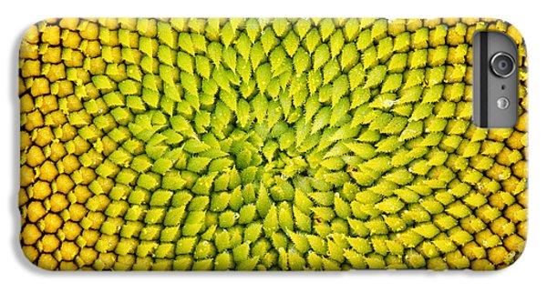 Sunflower Middle  IPhone 6 Plus Case by Tim Gainey