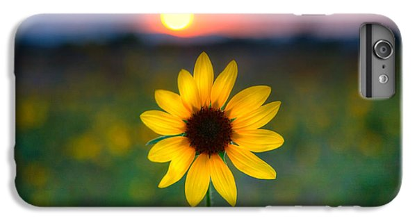 Sunflower Sunset IPhone 6 Plus Case by Peter Tellone