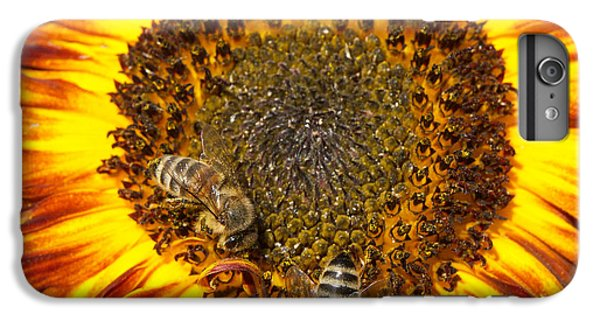Orange iPhone 6 Plus Case - Sunflower With Bees by Matthias Hauser