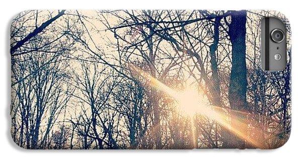 Sunlight Through The Trees IPhone 6 Plus Case