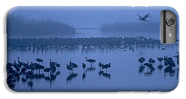 Sunrise Over The Hula Valley Israel 4 IPhone 6 Plus Case