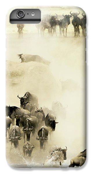 Africa iPhone 6 Plus Case - Swarming by Husain Alfraid