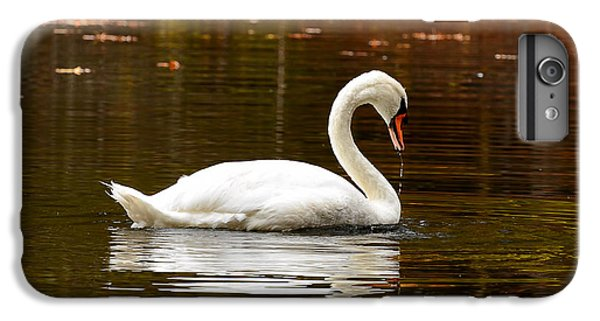 Swim And Grace IPhone 6 Plus Case by Lourry Legarde