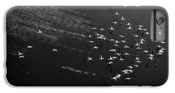 Helicopter iPhone 6 Plus Case - Take Off by John Fan
