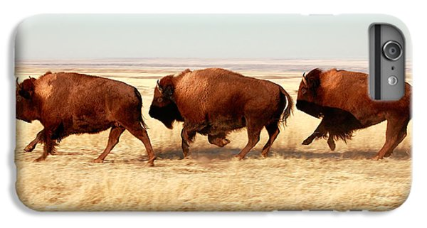 Tatanka IPhone 6 Plus Case by Todd Klassy