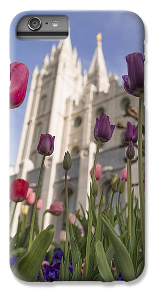 Tulip iPhone 6 Plus Case - Temple Tulips by Chad Dutson