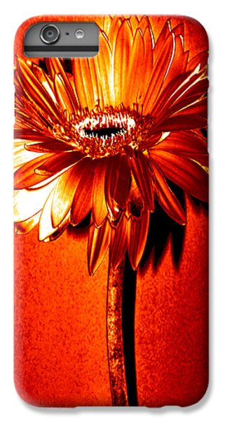 Tequila Sunrise Zinnia IPhone 6 Plus Case by Sherry Allen
