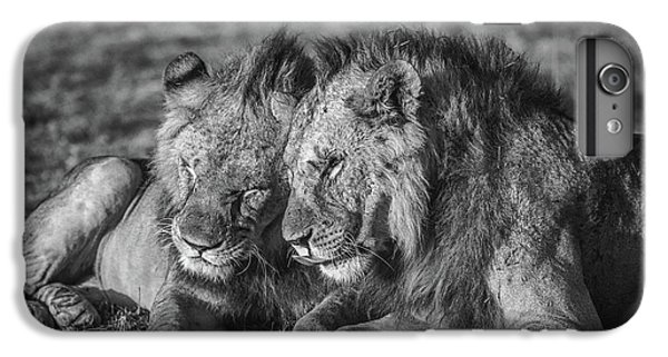 Lion iPhone 6 Plus Case - The Aging Alliance. by Jeffrey C. Sink