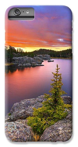 Beautiful iPhone 6 Plus Case - The Bonsai by Kadek Susanto
