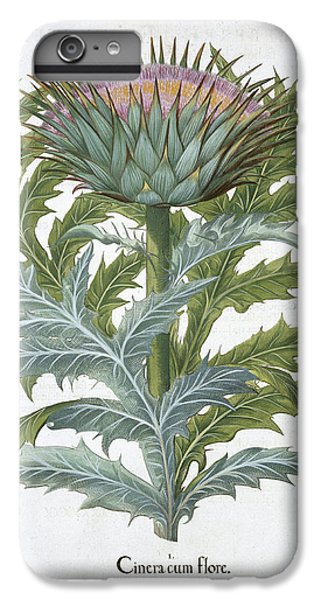 Artichoke iPhone 6 Plus Case - The Cardoon, From The Hortus by German School
