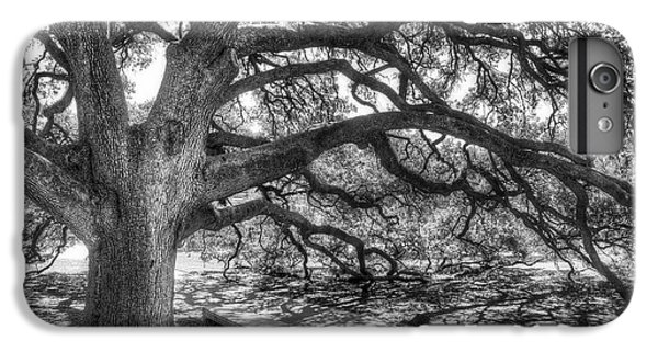 The Century Oak IPhone 6 Plus Case by Scott Norris