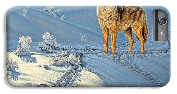 Wildlife iPhone 6 Plus Case - the Coyote - God's Dog by Paul Krapf