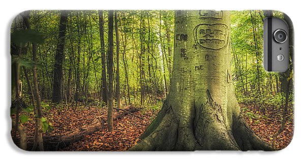 Nature Trail iPhone 6 Plus Case - The Giving Tree by Scott Norris