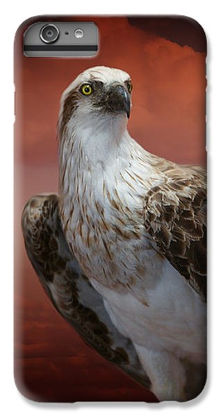 iPhone 6 Plus Case - The Glory Of An Eagle by Holly Kempe