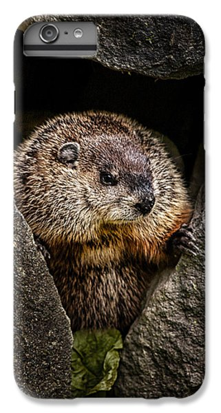 The Groundhog IPhone 6 Plus Case by Bob Orsillo