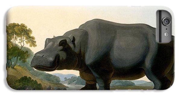 The Hippopotamus, 1804 IPhone 6 Plus Case by Samuel Daniell