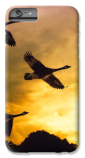 Goose iPhone 6 Plus Case - The Journey South by Bob Orsillo