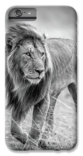 Lion iPhone 6 Plus Case - The Wary Champion by Jeffrey C. Sink