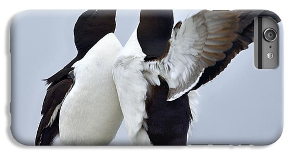 Razorbill iPhone 6 Plus Case - This Much by Tony Beck