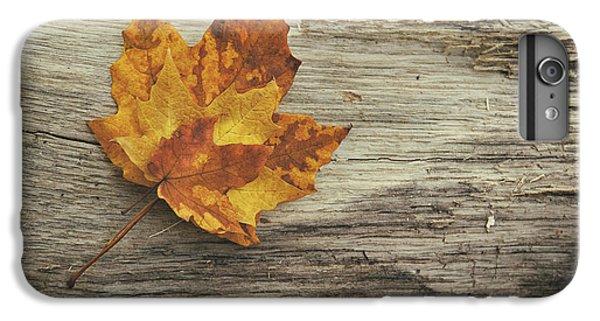 Three Leaves IPhone 6 Plus Case by Scott Norris
