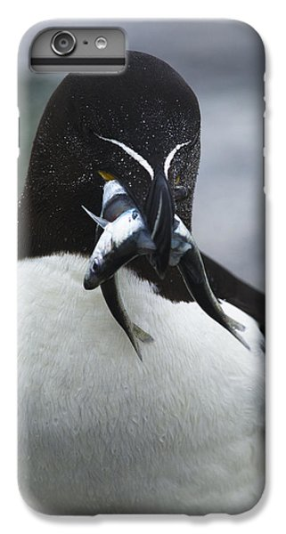 Feeding Time... IPhone 6 Plus Case