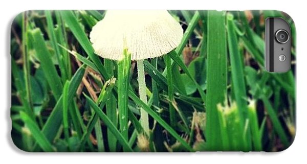 Tiny Mushroom In Grass #mushroom #grass IPhone 6 Plus Case