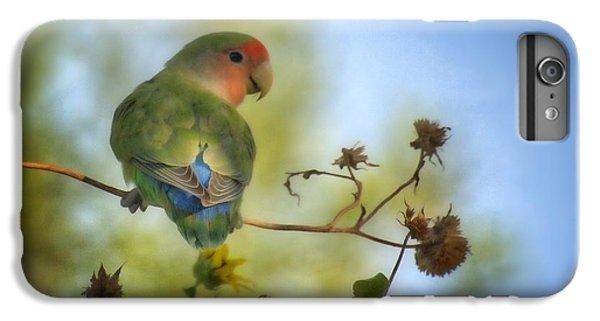 Lovebird iPhone 6 Plus Case - To Love A Lovebird by Saija  Lehtonen