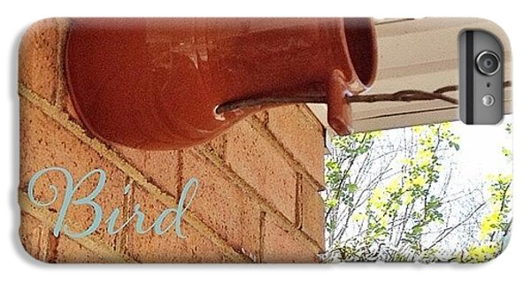 House iPhone 6 Plus Case - Today We Put Up Our Bird Bottle. We Got by Teresa Mucha