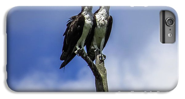 Together Again IPhone 6 Plus Case