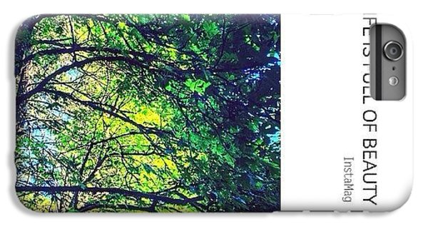 Sunny iPhone 6 Plus Case - Tree Canopy From My Afternoon Walk by Anna Porter