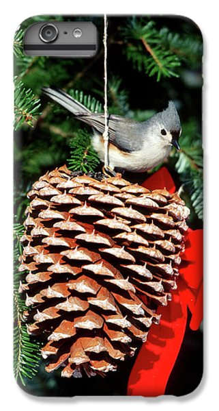Titmouse iPhone 6 Plus Case - Tufted Titmouse (baeolophus Bicolor by Richard and Susan Day