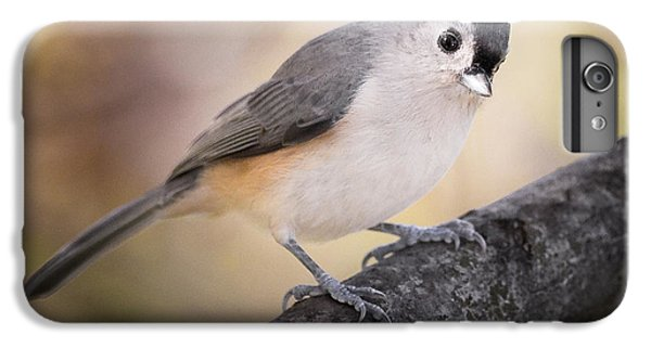 Tufted Titmouse IPhone 6 Plus Case by Bill Wakeley