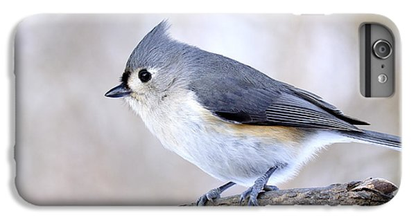 Titmouse iPhone 6 Plus Case - Tufted Titmouse On Dogwood 3 by Thomas R Fletcher