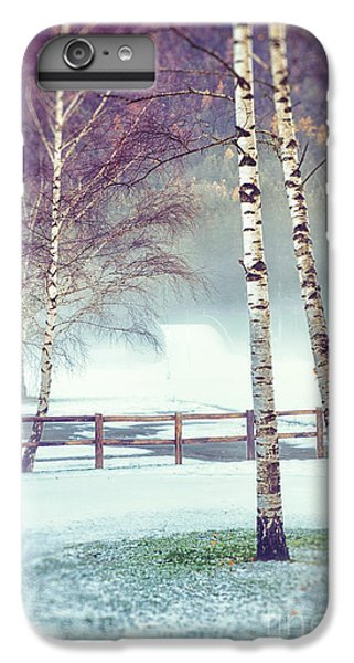 Two Birches IPhone 6 Plus Case by Silvia Ganora
