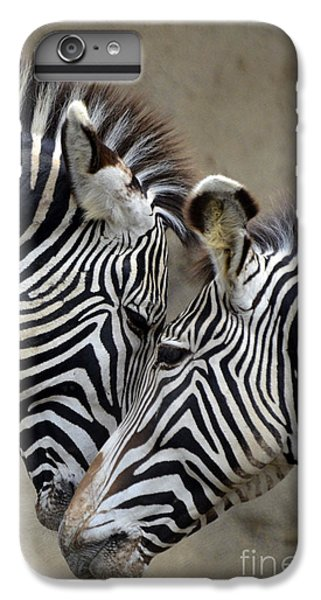 Two Zebras IPhone 6 Plus Case by Mark Newman