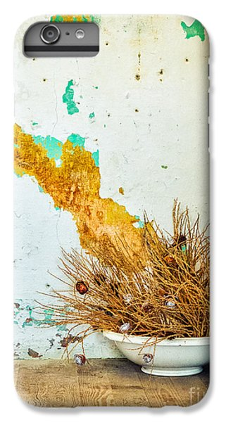 Vase On Wooden Floor IPhone 6 Plus Case by Silvia Ganora