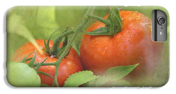 Vine Ripened Tomatoes IPhone 6 Plus Case